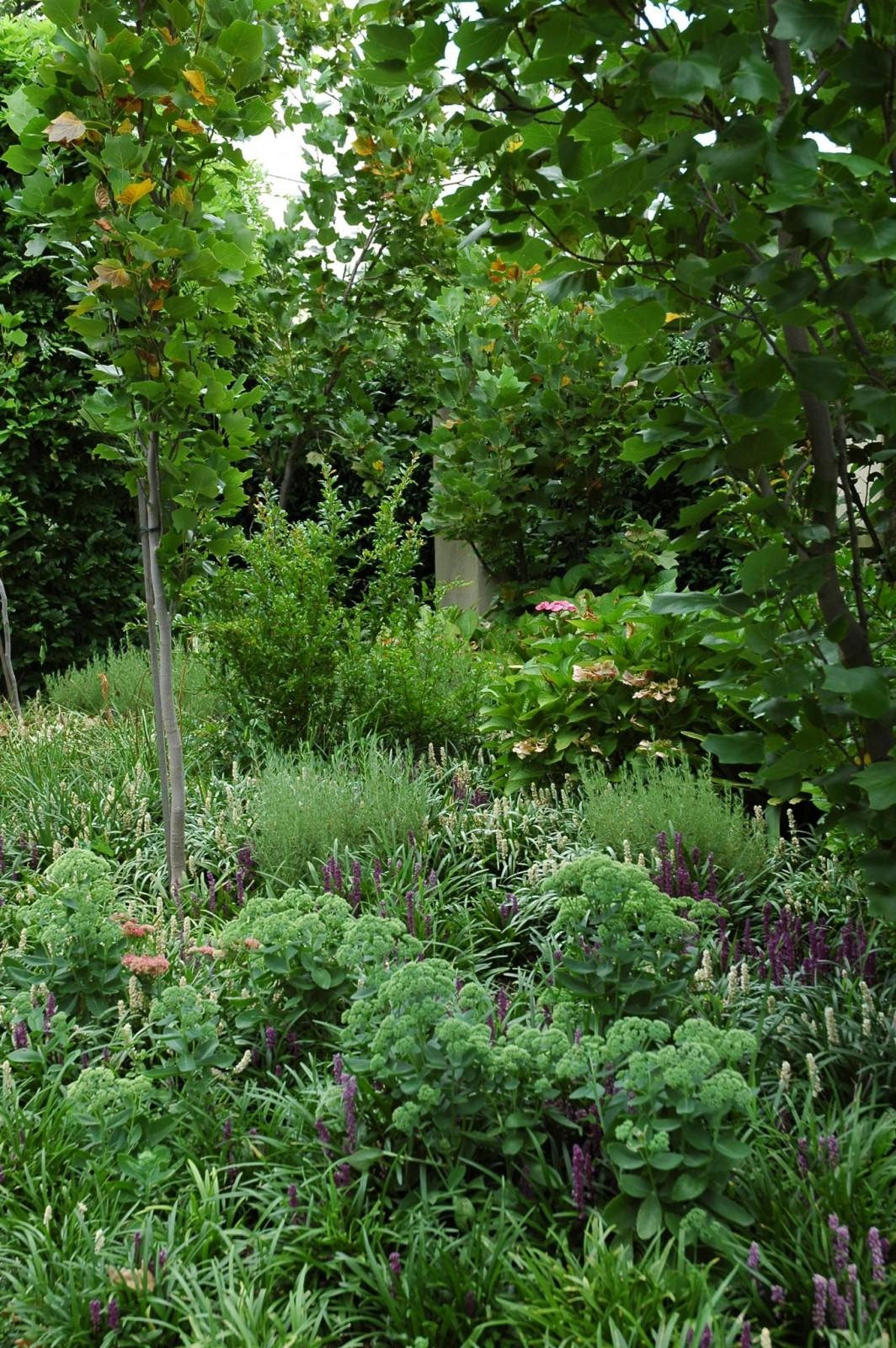 lillie-garden-by-eckersley-garden-architecture-malvern-victoria-1