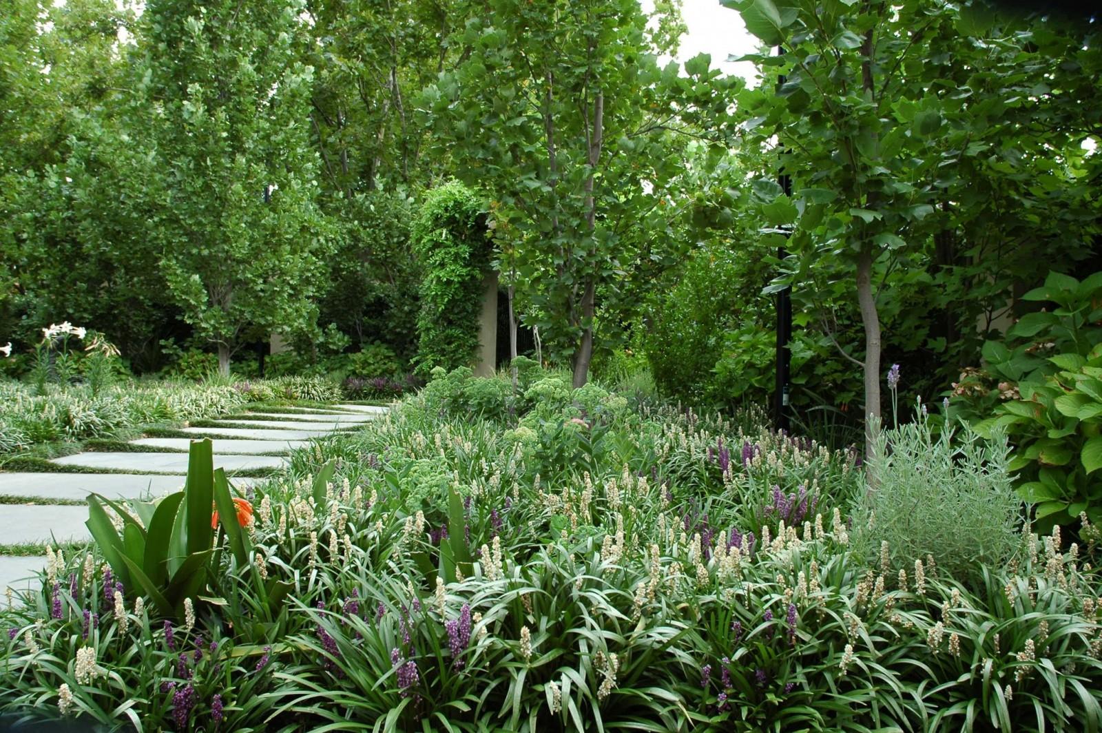 lillie-garden-by-eckersley-garden-architecture-malvern-victoria-2